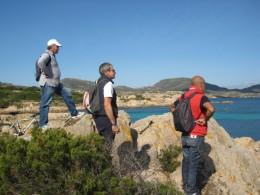 Trekking escursioni al parco nazionale dell 39 asinara da for Il verso dell asino